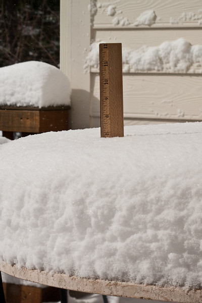 March 2, 2009:<br /> 7 inches (nearly 18 cm).