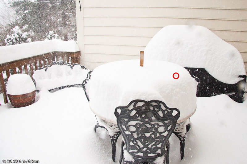 December 19, 2009: Blizzard of 2009<br /> At 1:30p, my 12-inch (30 cm) ruler is just barely peeking out; Mui put in a longer ruler.