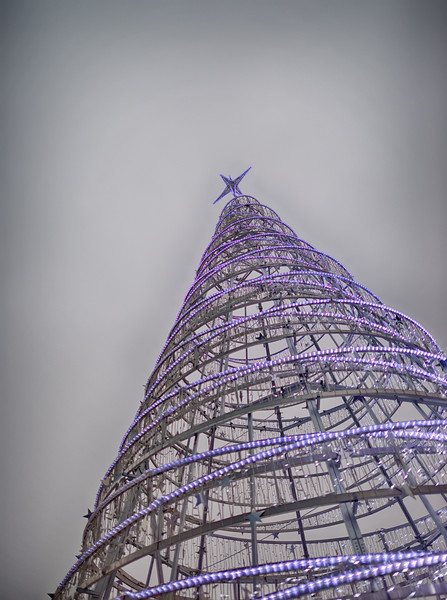 London City Hall Christmas Tree, December 2016