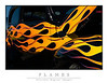 Flames6531-Web
