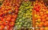 Tomatillos and Tomatoes