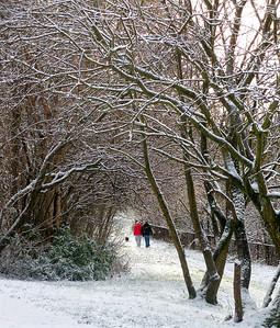Kelvingrove Park, Glasgow, 20/12/09.