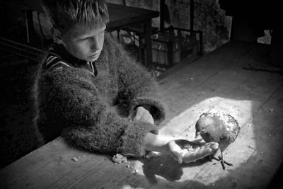 Boy with lame pigeon.  ~ At a BB summer camp near Gullane in the 1960s, when I was 13 or 14.   Billy was a troubled lad, a bit rebellious, but he formed a close bond with this injured bird.