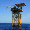 Here's the oil platform we caught most of our fish off of.  We were about 68 miles off shore.