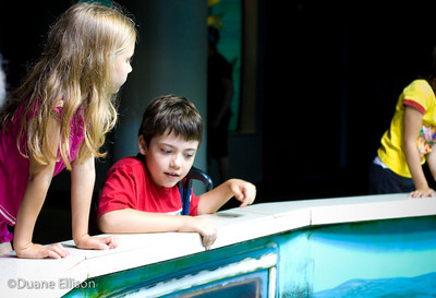 Aquarium (18 of 36)