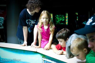 Aquarium (16 of 36)