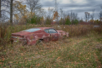 Ford Fairlaine rusting