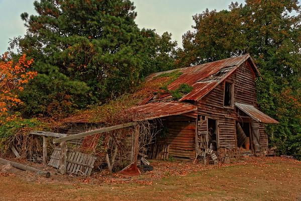 Old Houses and Barns - Northeastern North Carolina