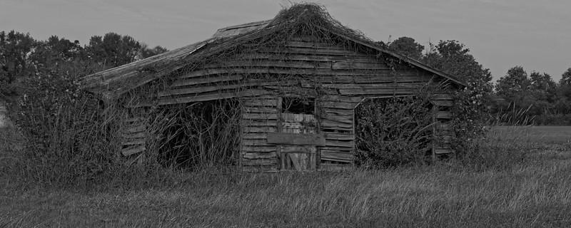 Barn on Gatesville Road