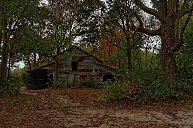 Barn in the Woods, Hwy 32, Edenton