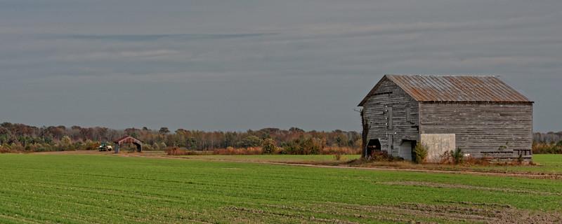 Barn in Oak City, Martin County, NC