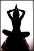 """Silhouette on Fur""<br /> <br /> Model<br /> Michelle Katherine - <a href=""http://www.modelmayhem.com/1273398"">http://www.modelmayhem.com/1273398</a>"