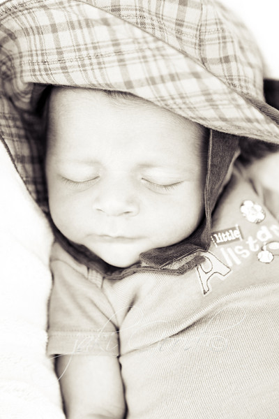 """<p class=""""ContentSubHeader""""> colt </p> <p class=""""ContentText""""> sweet baby boy - and his mommy is a very good friend of mine :) <br>   <a href=""""/gallery/9655158_2MVhM"""">click here to see more pictures...</a>"""