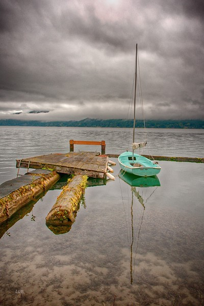 Private dock.  Lake Quinault.