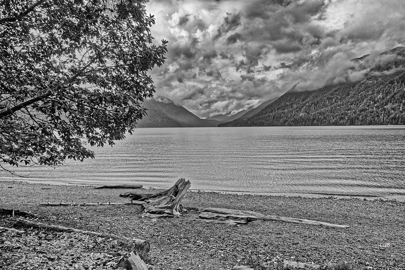Lake Crescent in black and white.