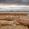 Washed ashore 1.