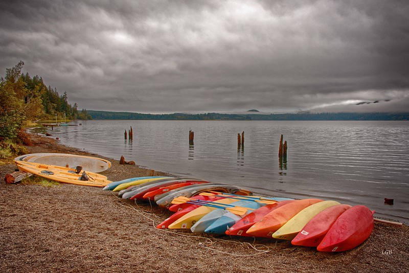 Ready for the Day.  Beach at Lake Quinault Lodge.