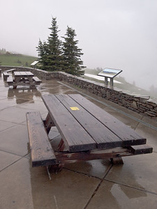 Picnic tables at Hurricane Ridge, Olympic National Park.