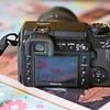 Olympus 45mm test 010