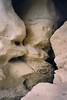 48 Sculpted Rocks
