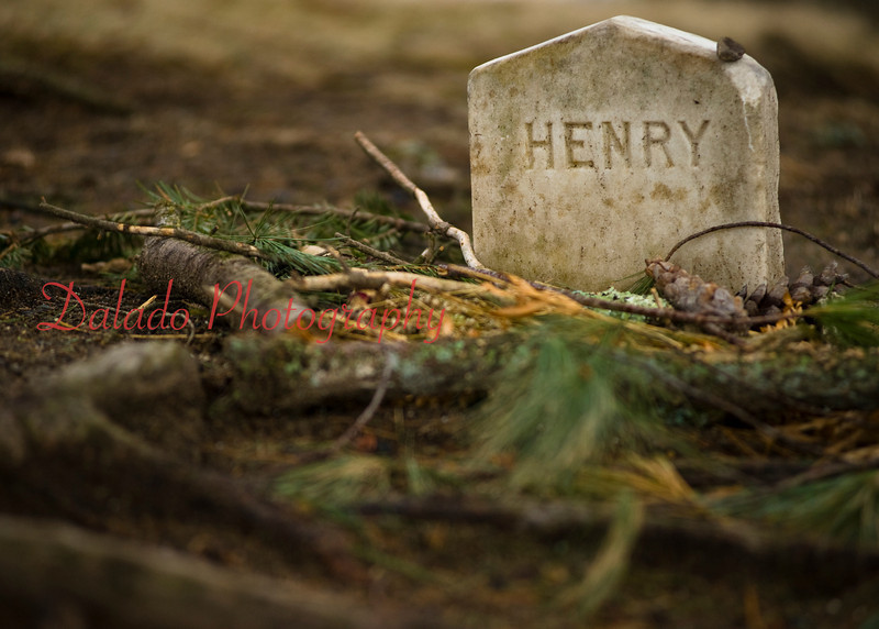 Henry David Thoreau's grave in Sleepy Hollow Cemetery in Concord, Mass.