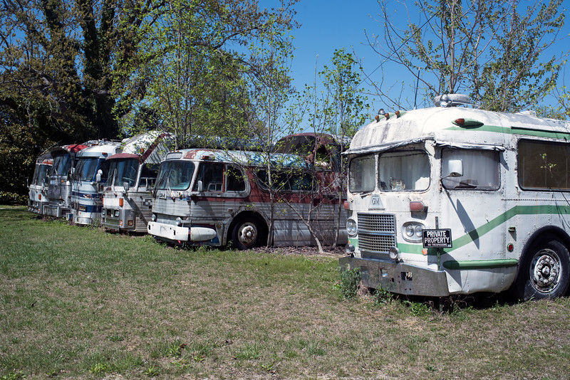 A 15-minute detour because of an accident led me to this bus graveyard.
