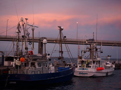 Boats n Bridge