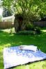 hoorrayy sunny day to read outside