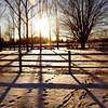 Sunshine Farm-001