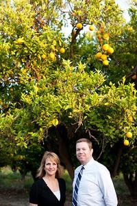 Orange Tree_0014