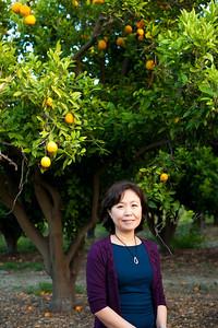 Orange Tree_0043