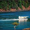 Seaplane taking off at Rosario Resort