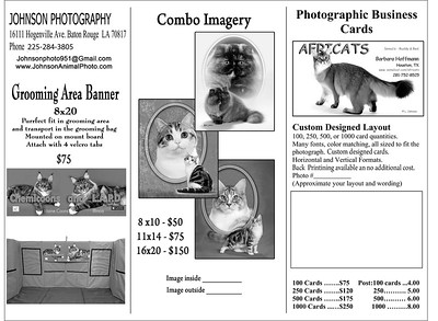 Busness Card-Display-Banner Form 2021
