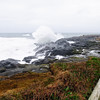 High winds and high tides make the rocky point on Boiler Bay exciting