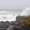 Seagull watches Big Burst at Boiler Bay Point