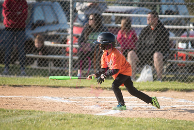 Orioles Little League