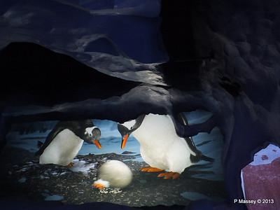 Antarctica Ride SeaWorld 27-09-2013 14-49-29