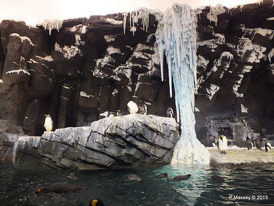 Antarctica Empire of the Penguins SeaWorld 27-09-2013 15-01-59