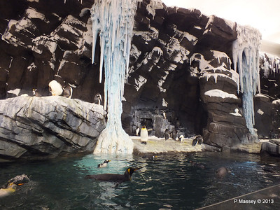 Antarctica Empire of the Penguins SeaWorld 27-09-2013 15-02-09