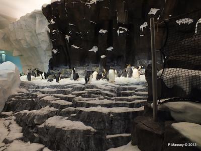 Antarctica Empire of the Penguins SeaWorld 27-09-2013 15-03-44