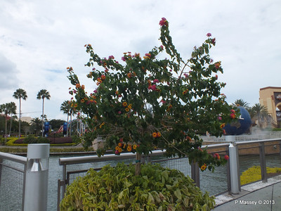 Flowers Water Taxi Landing Stage 22-09-2013 19-15-29