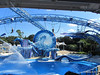 Dolphin Show Blue Horizons Theater SeaWorld 21-09-2013 15-12-00