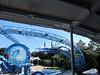 Dolphin Show Blue Horizons Theater SeaWorld 21-09-2013 15-08-30