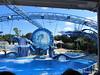 Dolphin Show Blue Horizons Theater SeaWorld 21-09-2013 15-12-26