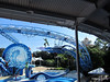 Dolphin Show Blue Horizons Theater SeaWorld 21-09-2013 15-09-00