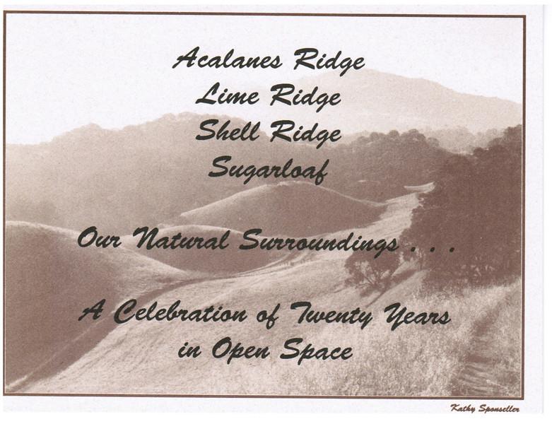 20th anniversary invitation