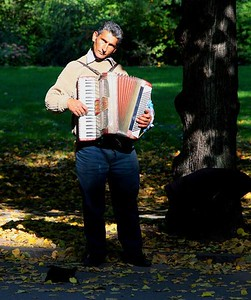 Accordion player in Vigelands Parken.