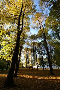 Autumn in Oslo