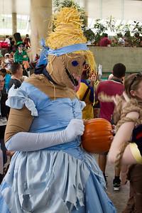 Scarecrow Cinderella
