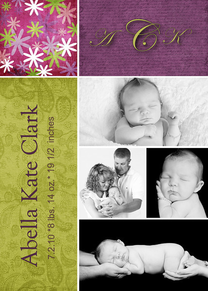 clark purple-brights 5x7 card